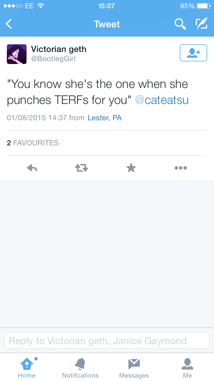 Punches terfs